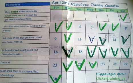 _Track_Training_Calendar_hippologic